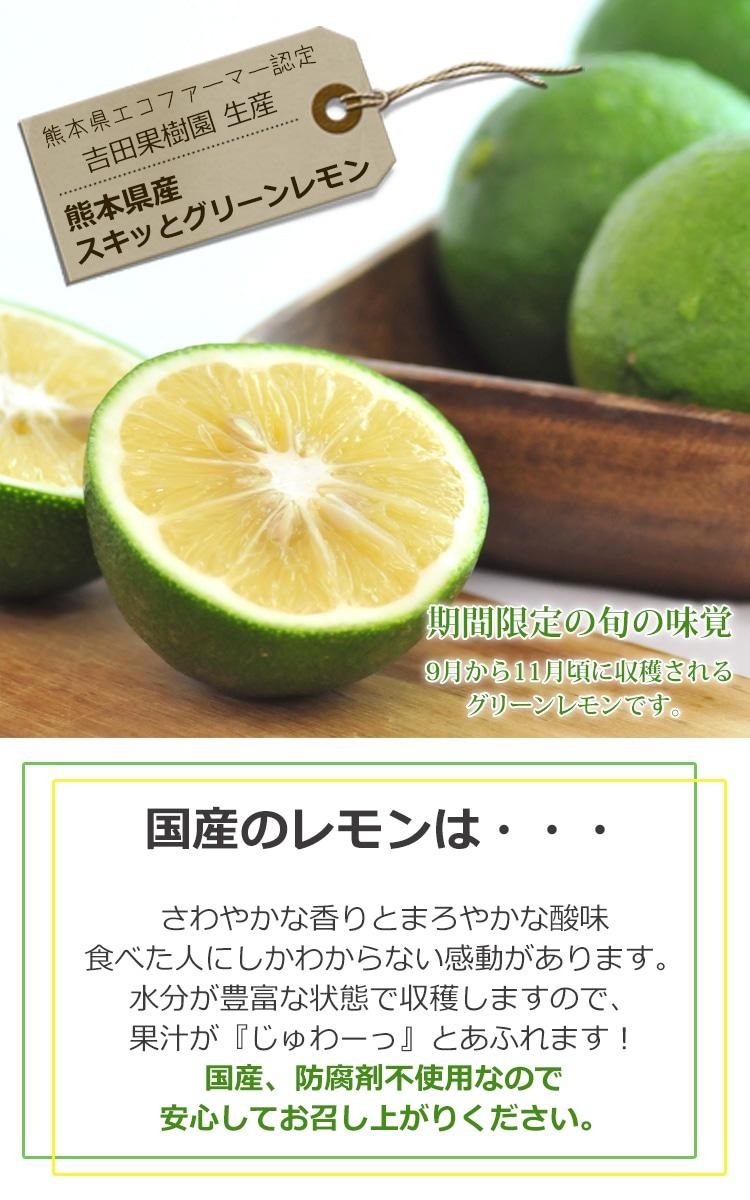 熊本県産 スキッとレモン 500g 【特別栽培】【国産レモン】