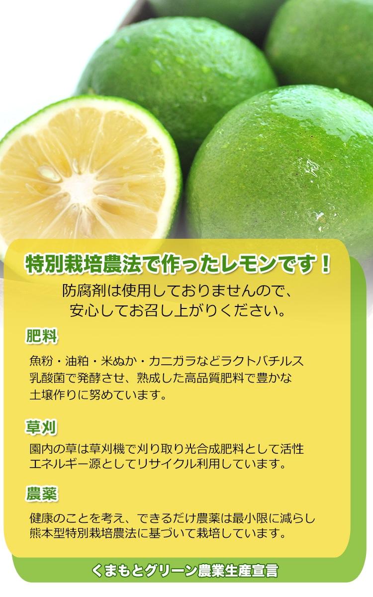 熊本県産 スキッとレモン 1Kg 【特別栽培】【国産レモン】