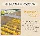 皮ごとゆずde人参ジュース 1箱 100cc×30パック ミックスジュース 国産無農薬人参 国産柚子 コールドプレス製法 無添加 無加糖 無加水 送料無料