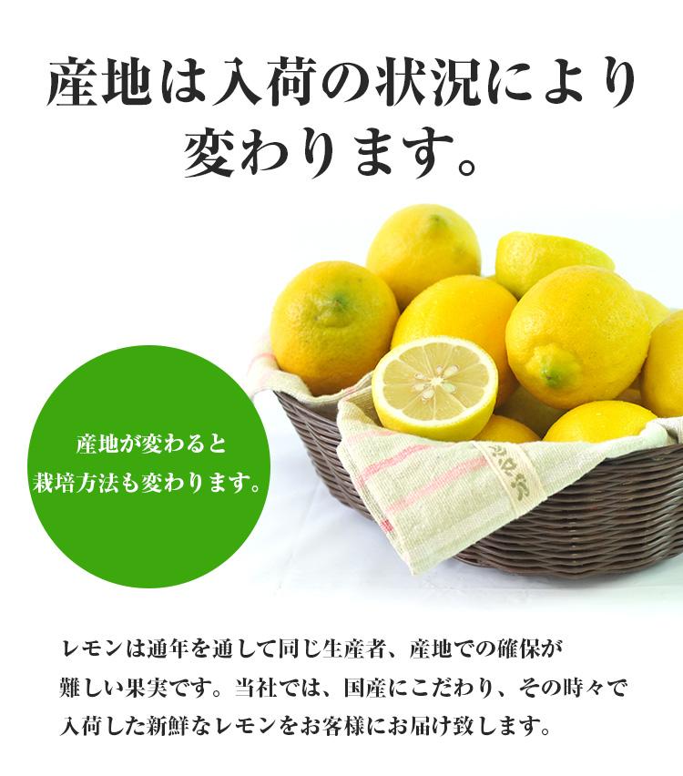 特別栽培 国産レモン 1kg