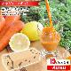 【ギフト】葉っぱ付きまるごとにんじんジュース 15パック(100c×15p) 冷凍ジュース 人参ジュース 野菜ジュース お歳暮 お中元 全体食 ホールフード