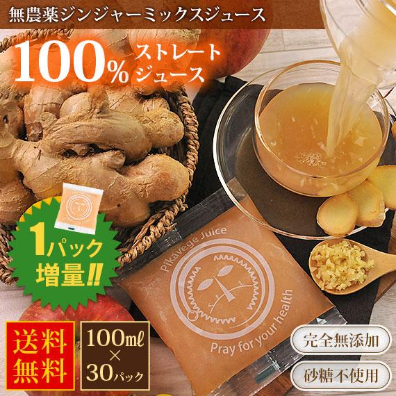 無農薬ジンジャーミックスジュース 100cc×30パック アップルジンジャー みかんジンジャー 冷凍ジュース 無農薬生姜 ミックスジュース