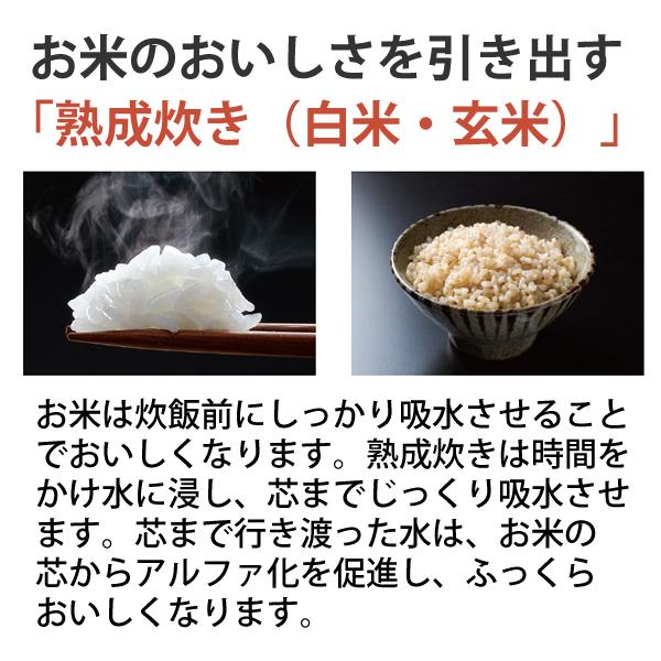 [NP-BK10-BA] 圧力IH炊飯ジャー 1.0L(5.5合)