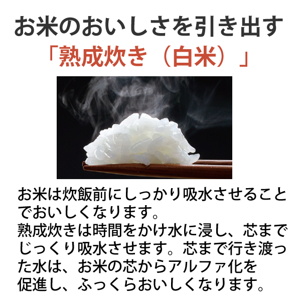 [NP-ZU10-TD] 圧力IH炊飯ジャー 1.0L(5.5合)