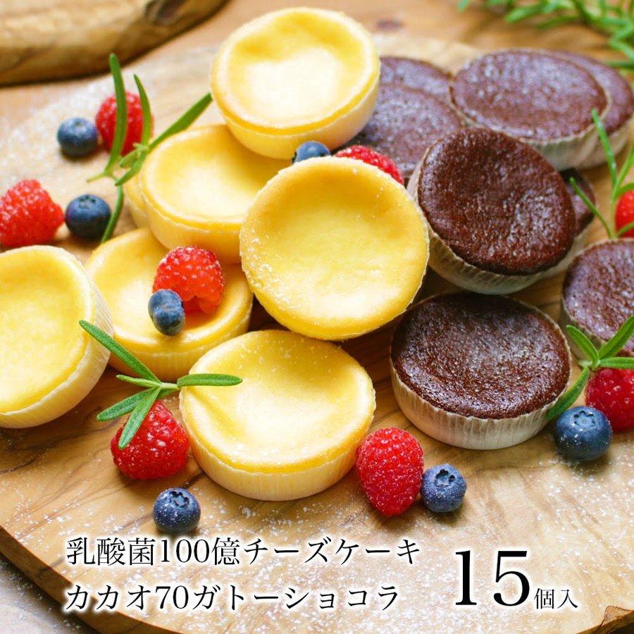 乳酸菌100億 チーズケーキ &カカオ70 ガトーショコラ 15個入
