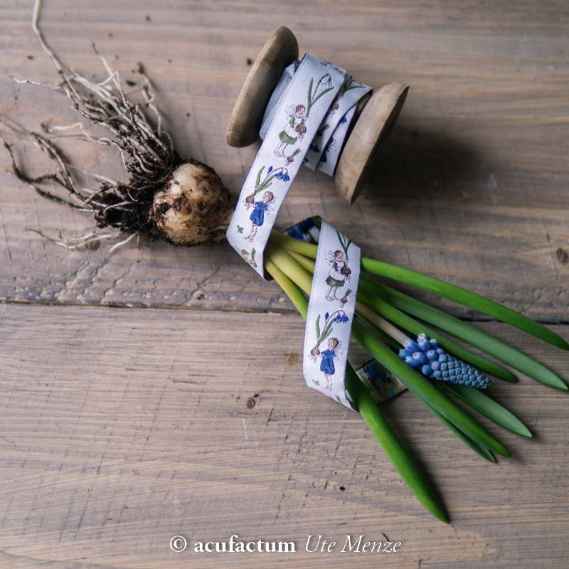 【50cm単位】acufactum312 約幅16mm/ムスカリ,球根,春の妖精柄のジャガードリボン チロリアンテープ