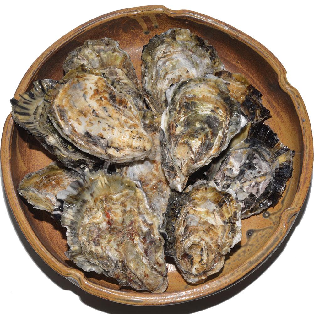 【送料無料】広島県産冷凍殻付き牡蠣10個入り×2袋【数量限定】
