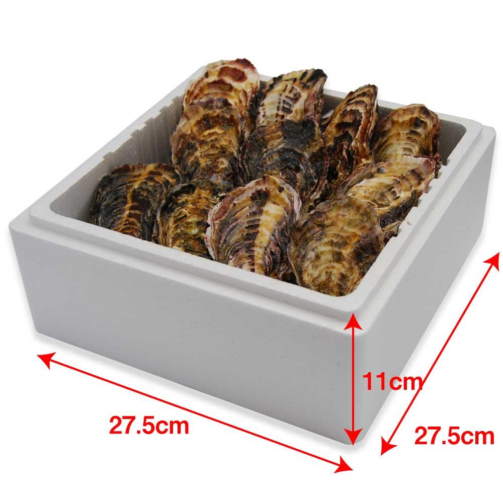 (活き)一粒殻付き牡蠣Lサイズ(大)