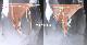 女体化Vストリング/尿道付き&膣付きの両用タイプに生理キット付き/フル装備の超リアルなラバー製の人工女性器と肛門/ヘアの選択可能◆取り寄せ