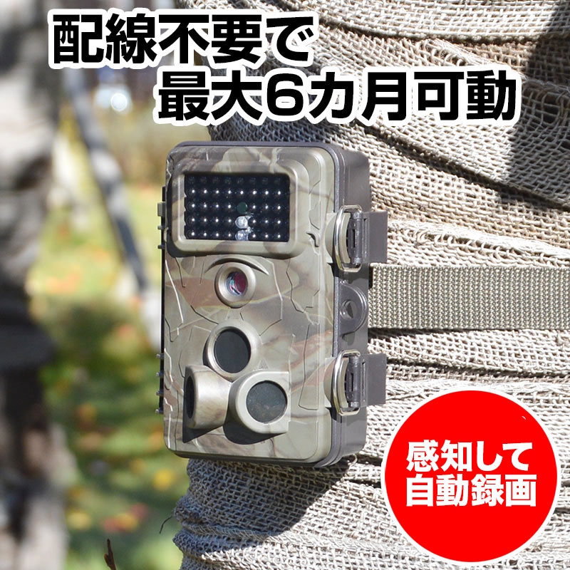 自動録画防犯カメラ RD1006AT