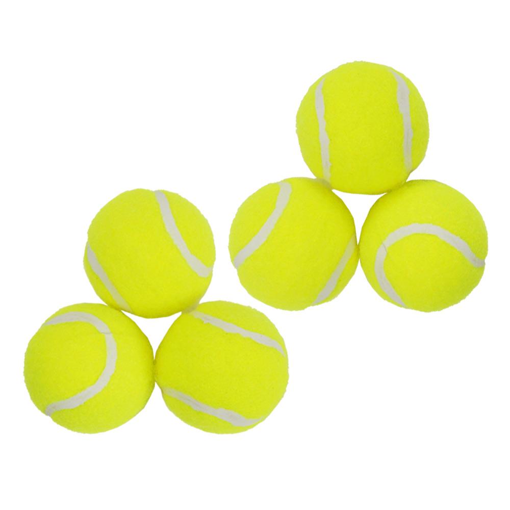 わんちゃんも喜ぶ「ペット用ボール遊びシューター」専用ボール 6個入り
