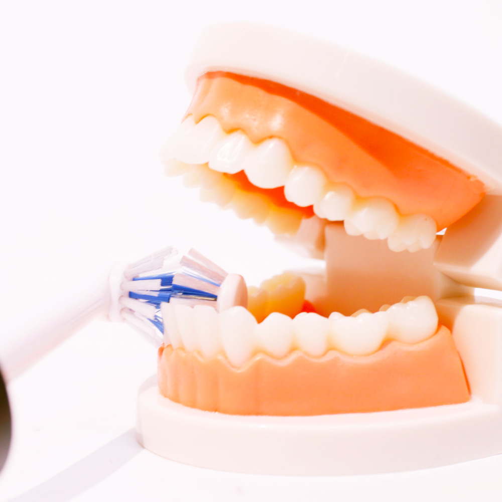 倍磨きできる電動歯ブラシ「デュアルクリーン」