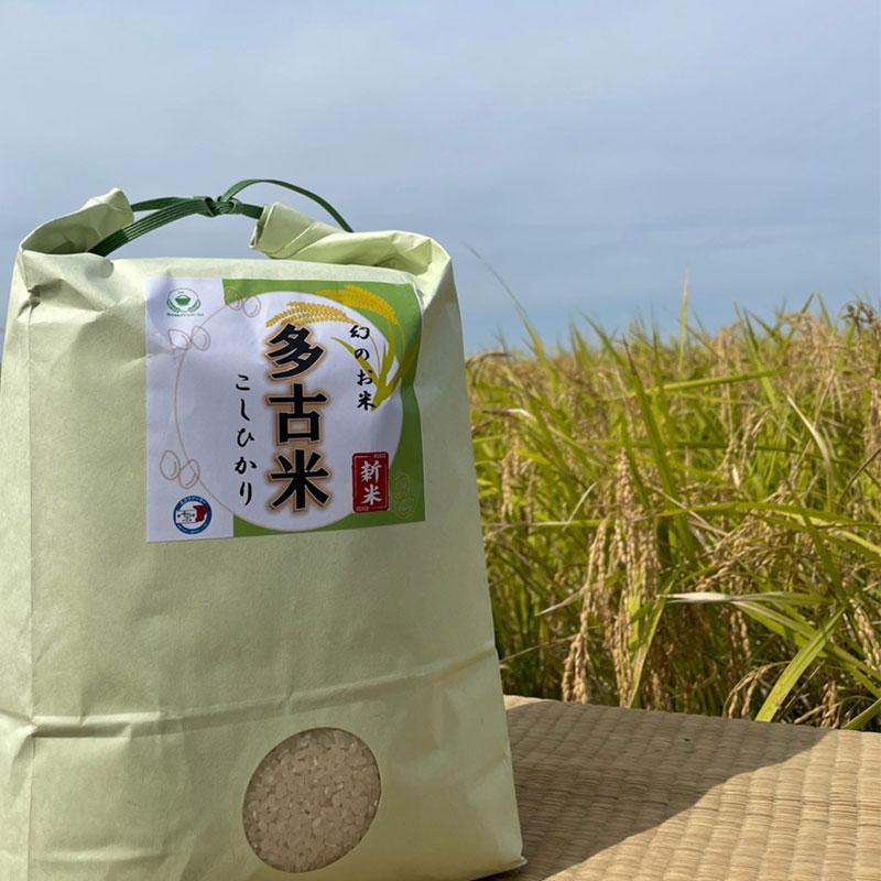 令和3年度産 新米 多古米コシヒカリ 5kg