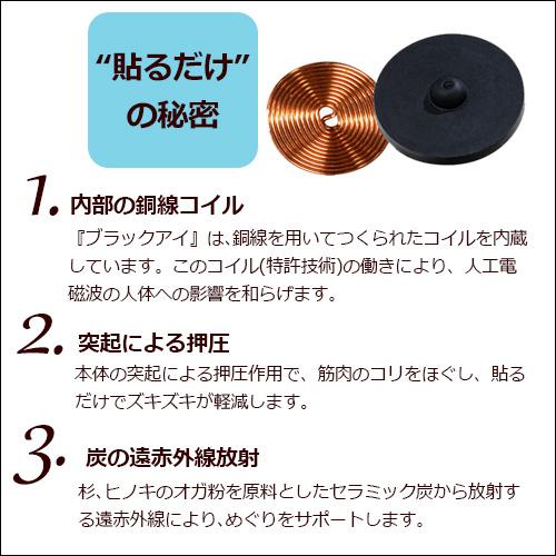 丸山式コイル ブラックアイ(2個入り)