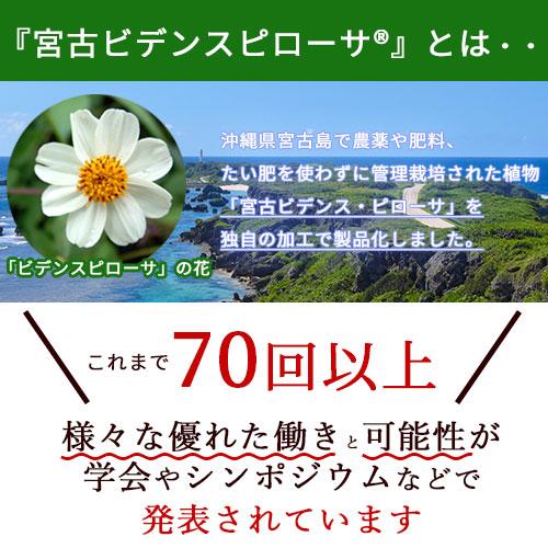 宮古BPドリンク 50ml×10本入