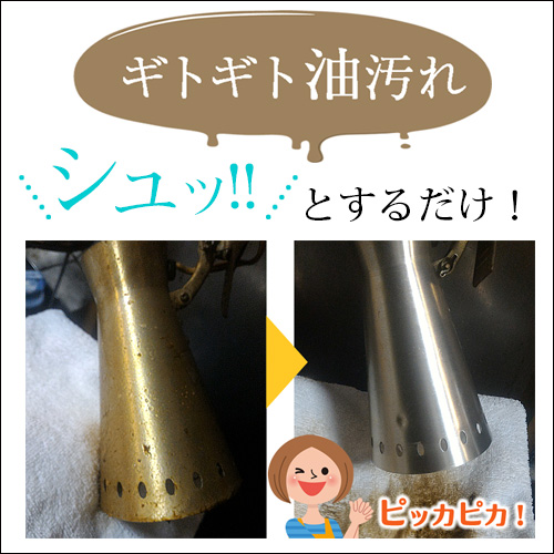 テラ・パワーウォッシュ しつこい汚れ用 (原液タイプ・480ml)