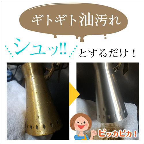 テラ・パワーウォッシュ詰替用 (原液タイプ・1000ml)