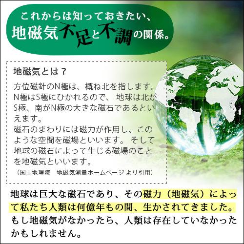 丸山式ガイアコットン Gaiga(ガイガ) シングルサイズ(100×200cm)