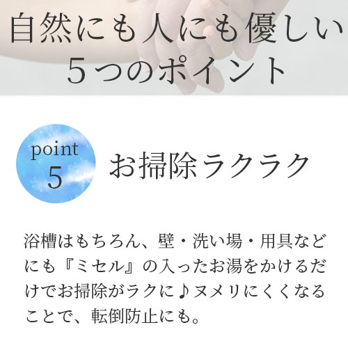 【わくわく定期便】ミセル 詰替用 300ml(約60回分)