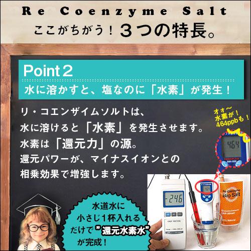 リ・コエンザイム 野草塩 150g(詰替用大ボトル入り)