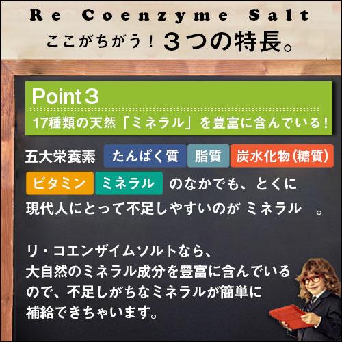 リ・コエンザイム 野草塩 85g