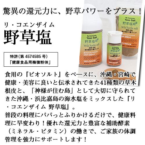 リ・コエンザイム 野草塩 23g(携帯ボトル入り)