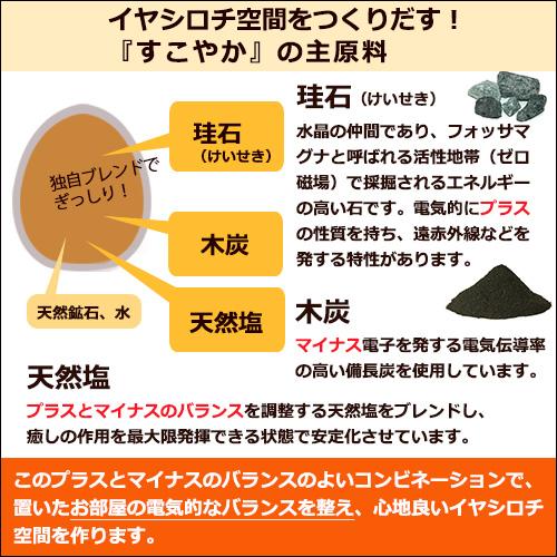 すこやか ポット(大) 4個セット【特典付き】