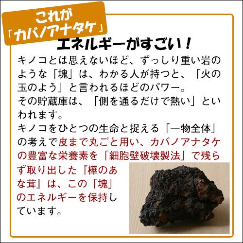 樺のあな茸 ゴールドブレンド(7包入)