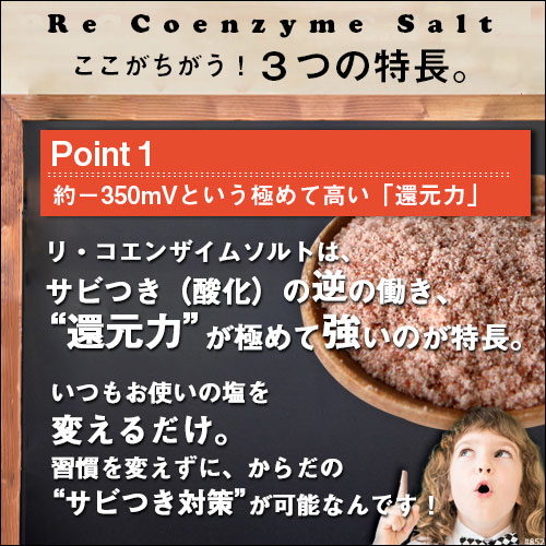 リ・コエンザイム ビオソルト 70g (大粒・ミル付)