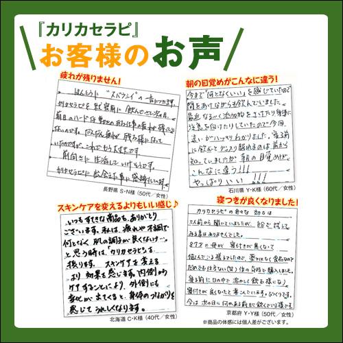 【わくわく定期便】カリカセラピSAIDO-PS501 (3g×100包)