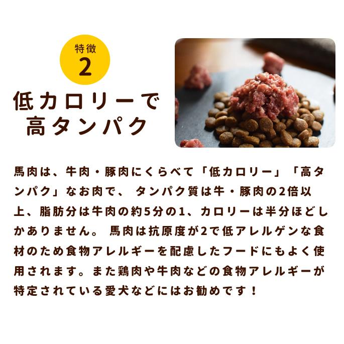 犬用生肉|冷凍 馬肉 小分けトレー 5kg【まとめ買い】【a0013】【定期購入もできます】※愛猫にもご利用いただけます