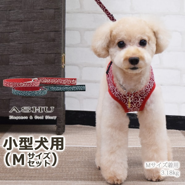 ASHUウェアハーネス 唐草セット Mサイズ(小型犬用)