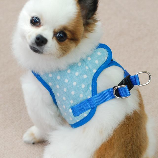 ASHUウェアハーネス水玉&リードセット Sサイズ(小型犬用)