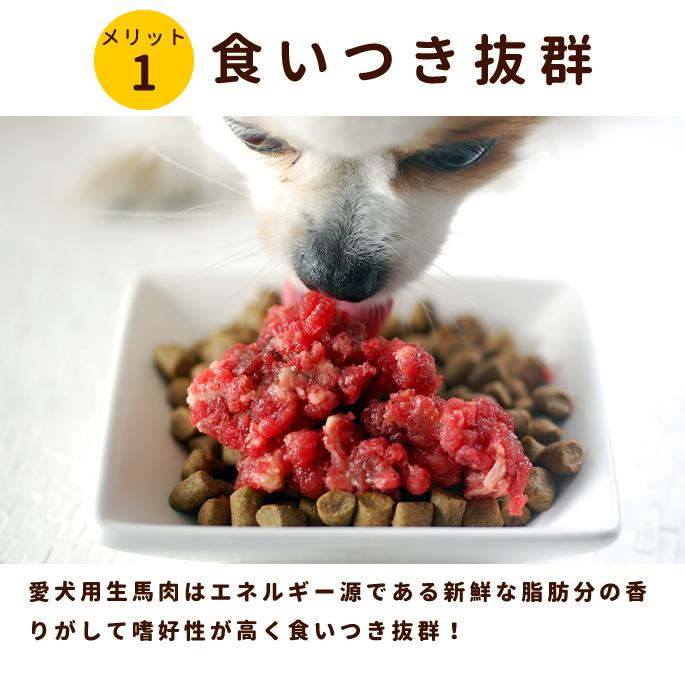 犬用 馬肉|冷凍生馬肉 荒挽き 小分けトレー1kg [250g×4] カナダ産【a0013】【定期購入もできます】※愛猫にもご利用いただけます