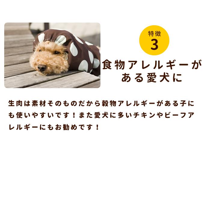 犬用 馬肉|冷凍生馬肉 荒挽き 小分けトレー1kg [250g×4] 【a0013】【定期購入もできます】※愛猫にもご利用いただけます