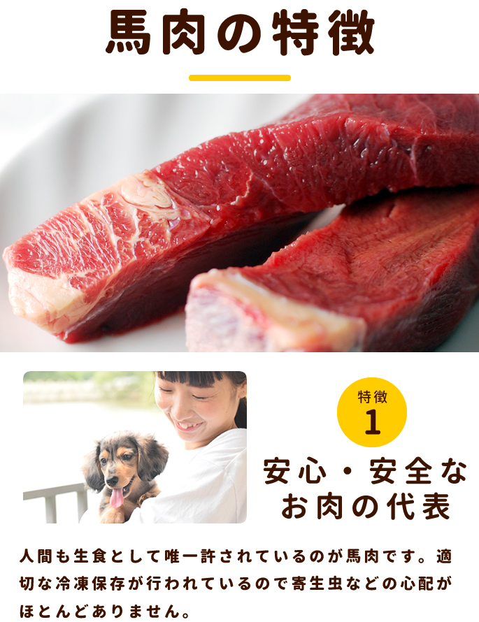 犬用 馬肉|冷凍生馬肉 ブロック 手作り食に カナダ・メキシコ産  1kg [500g×2]【a0015】※愛猫にもご利用いただけます