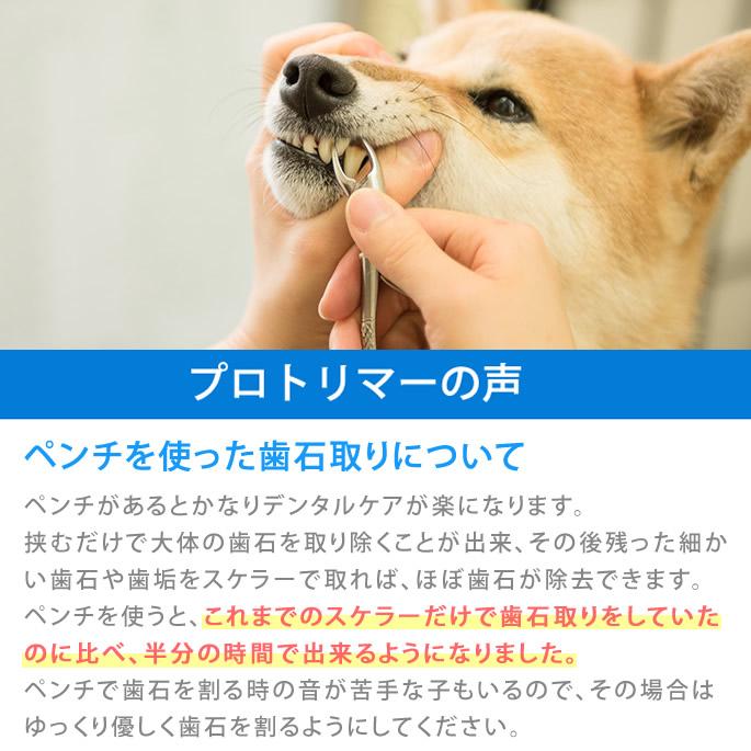 愛犬・愛猫用歯石取りペンチ【a0268】