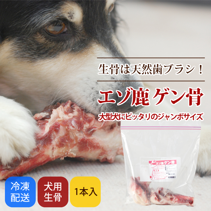犬用 生骨|エゾ鹿 ゲン骨 デンタルケアにも【a0035】