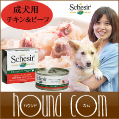 Schesir(シシア)/ドッグ ゼリータイプ チキン&ビーフ缶