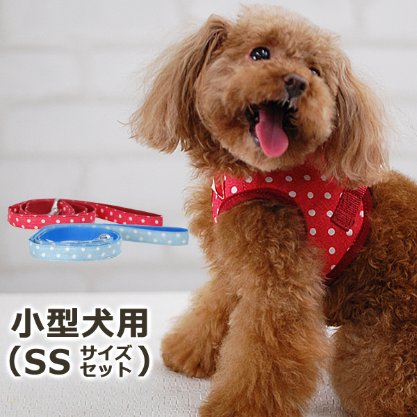 ASHUウェアハーネス水玉&リードセット SSサイズ(超小型犬用)