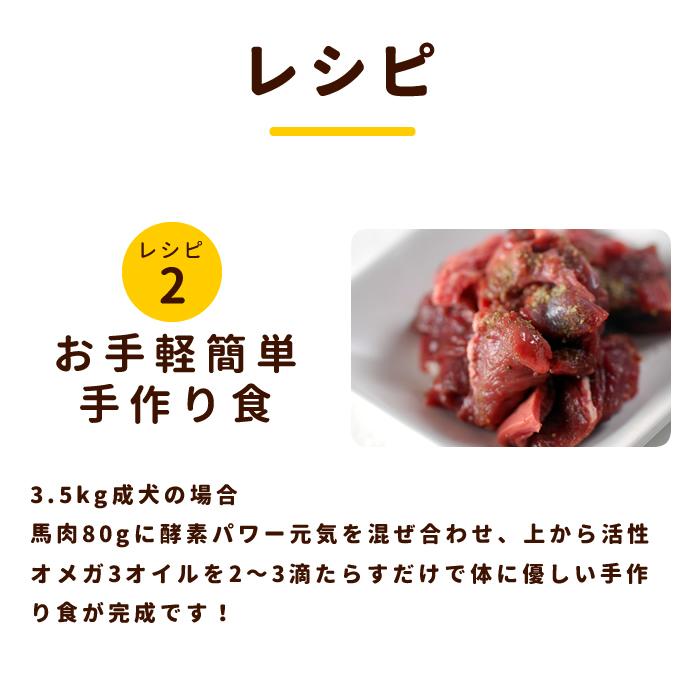 犬用生肉 冷凍 馬肉 10kg ブロック【まとめ買い】【a0015】【定期購入もできます】※愛猫にもご利用いただけます