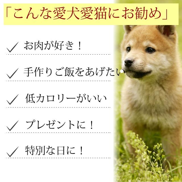 犬用 馬肉 愛犬用 3種の馬肉団子(ミートボール) 手作り食にも