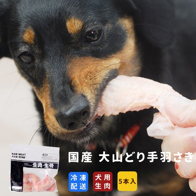 犬用 生肉|国産 大山どり手羽さき 5本入り 栄養補給・歯石 手作り食材【a0032】※愛猫にもご利用いただけます
