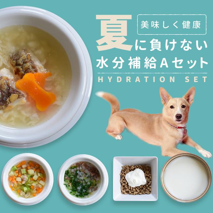 【予約販売9月22日以降出荷】【夏限定】夏にピッタリな愛犬の水分補給セットA