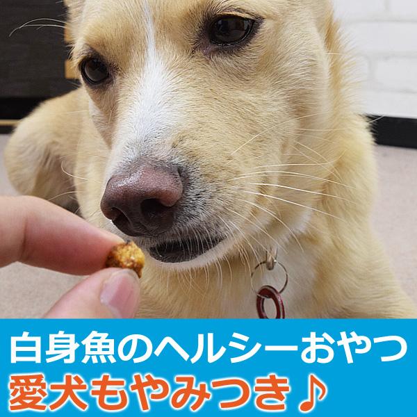犬用おやつ|無添加獲れたて 白身魚コロコロステーキ 【a0319】 ※愛猫にもご利用いただけます