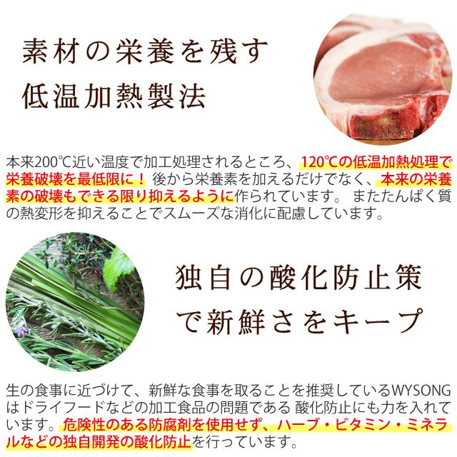ワイソン バイタリティ 2.27kg スターターパック【初回限定!送料無料】【a0233】