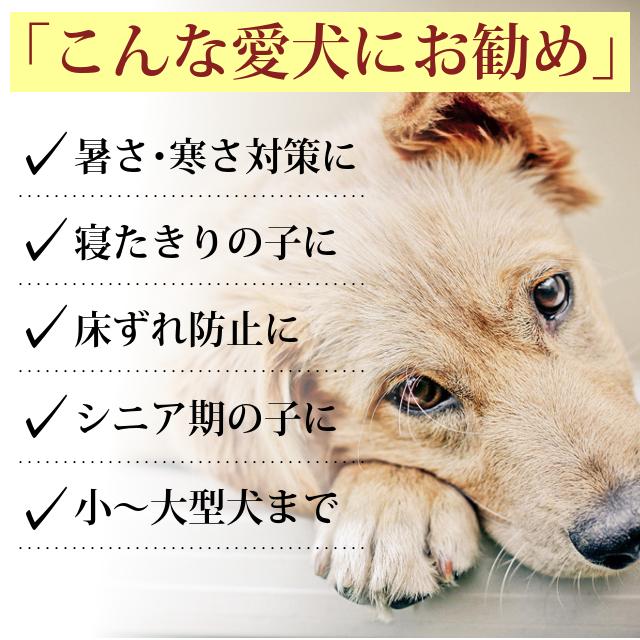 老犬用 ペットケアマットNEO Lサイズ |シニア犬 爽快潔リビング