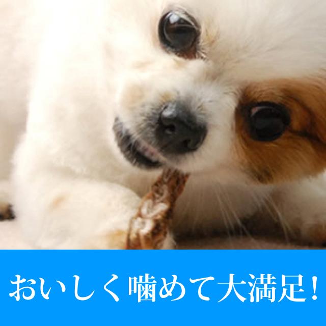 犬用おやつ 無添加獲れたて ペットのふかひれ50g【a0133】