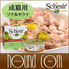 Schesir(シシア)/キャット フルーツタイプ ツナ&キウイ缶