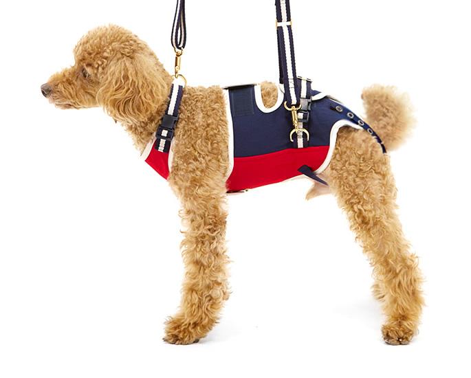 歩行補助ハーネス LaLaWalk 小型犬、ダックス用